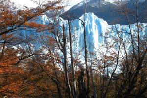 高端游南美四国18天|智利、阿根廷、巴西、秘鲁四国深度游