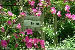 石家庄到杭州旅游价格石家庄到杭州七日游线路