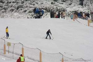 重庆到金佛山旅游_金佛山一日游_金佛山滑雪一日游