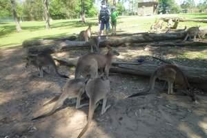 八月北京出发到去澳大利亚旅游美食推荐 澳大利亚尖锋食客9日游