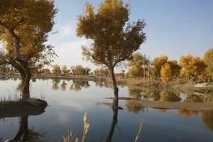 新疆南疆环飞旅游 乌鲁木齐出发到库尔勒 库车 喀什双飞5日游
