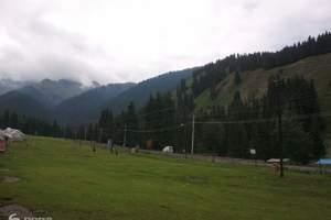 从乌鲁木齐到南山一日游,含西白杨沟游览景点门票