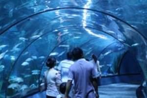 北京动物园_海洋馆一日