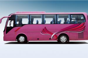 [六安租车公司]旅游 会务租车(29座)