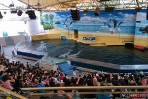 广州海洋馆、动物园一天游