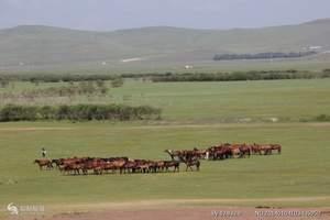 赤峰乌兰布统坝上草原、玉龙沙湖、锡林郭勒草原、双高五日游