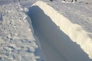 冬季热发 冬季采摘、太阳岛冰雪世界一日游