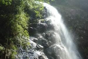 惠州南昆山国家森林公园、龙门尚天然国际温泉、鲁冰花2天休闲游