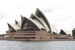 新疆出发到澳新|乌鲁木齐到澳大利亚|新西兰|海豚岛六飞十三日