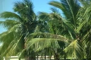 泰安到海南旅游  新品海岛之恋海南双飞精品六日游-情侣之选