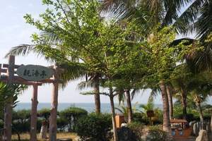 西安到海南西岛猴岛旅游攻略 西岛双飞六天旅游跟团费用