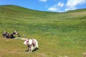 内蒙古旅游攻略|【智慧草原行】内蒙古亲子游度假双飞5日游
