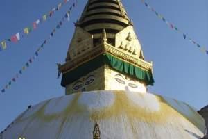 青岛去西藏旅游_鲁朗林海,南伊沟,雅鲁藏布大峡谷等12日游