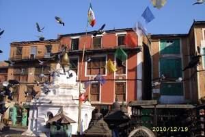 兰州到西藏旅游 西藏全景双卧10日特价游
