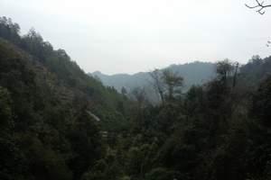北京独立成团去东北哈尔滨旅游路线太阳岛、雪乡双飞5日游