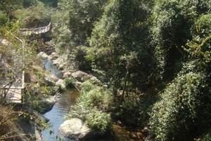 厦门到东南花都、金谷温泉·水上乐园一日游-周边游旅游攻略