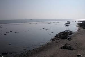 哈尔滨到丹东大鹿岛4日游_丹东旅游景点大全_丹东大鹿岛好玩么