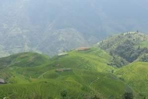 桂林旅游攻略一日游|桂林龙脊梯田一日游