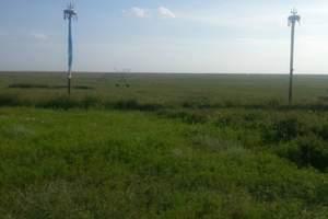 鄂尔多斯草原、响沙湾一日游