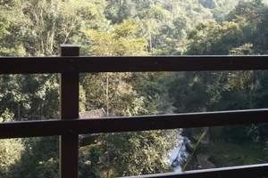 12月去云南旅游必备物品|昆明石林|西双版纳|野象谷5天游