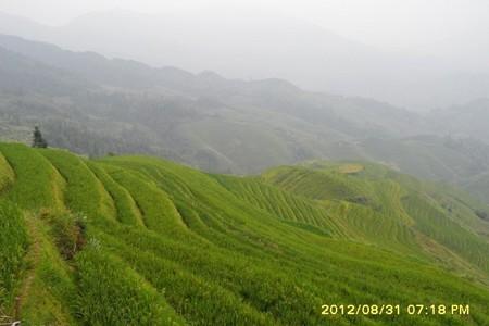 去桂林旅游,青岛出发去桂林象鼻山,船游漓江,龙脊梯田双飞6天