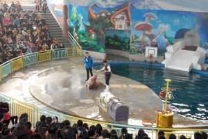 武汉海昌极地海洋公园_武汉极地海洋世界门票价格多少