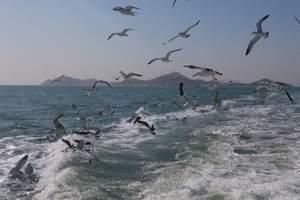 天津到蓬莱旅游团、长岛、九丈崖、半月湾、望夫礁深度三日游