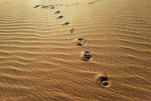 希拉穆仁草原、库布齐沙漠经典两日游