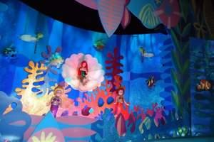 米奇迪士尼魔法王国 泰安去上海迪士尼 乌镇水乡绮梦迪士五日游