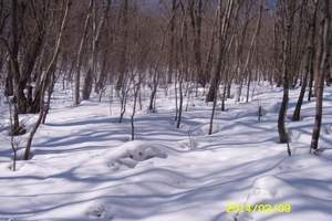 东北雪乡冬日亲子游 带我去雪乡看雪啦 雪乡冬季亲子推荐旅游点