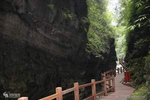 重庆周边哪里好玩 重庆周边一日游 万盛黑山谷休闲养生一日游