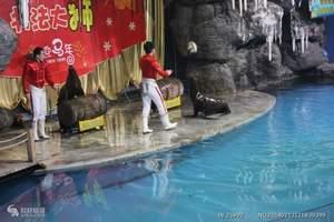 洛阳龙门海洋馆门票多少钱