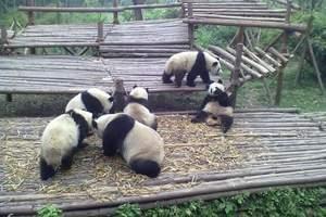 成都熊猫基地、广汉三星堆文化一日游_成都周边一日游推荐三星堆