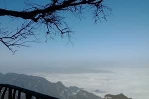 张家界三日游 大峡谷玻璃桥+森林公园+百龙电梯单程+天门山