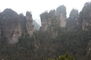 湖南旅游注意事项--张家界天子山芙蓉镇双卧九日|重庆旅游攻略