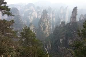 武汉到张家界旅游线路价格-张家界凤凰双动四日游