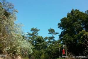 端午节西安周边旅游去哪里好|西安到金丝峡、汉中、安康二日游