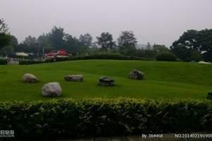国色天香乐园