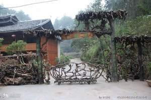 怀化靖州杨梅品尝一日游