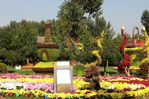 京郊团队游 顺义国际鲜花港、采摘双汽纯玩团队游