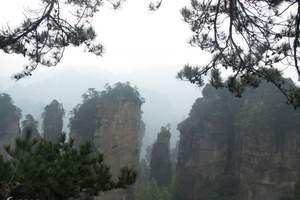 张家界国家森林公园、杨家界、袁家界、天子山、浪漫凤凰古城