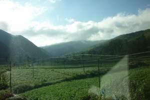 石家庄到内蒙古旅游----沙漠、草原、呼市五日游(火车旅游)