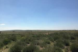 【北京出发到内蒙古旅游推荐】希拉姆仁草原神奇的沙漠双卧四日游