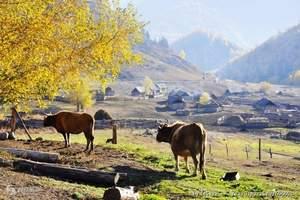 新疆喀纳斯、禾木、可可托海双飞7日 喀纳斯飞机多少钱_门票