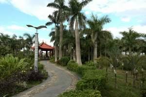 西双版纳中科院植物园景区直通车一日游