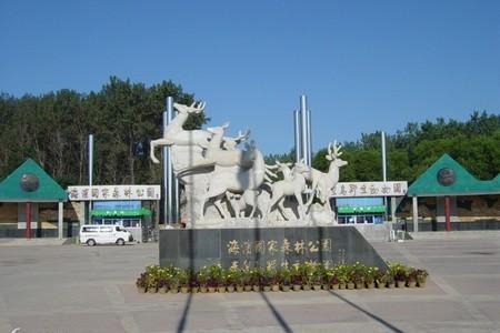 【唐山到秦皇岛野生动物园一日游】唐山到秦皇岛野生动物园旅游
