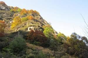 重庆-武隆仙女山 、黄金甲拍摄地一日游(市区包接)含中餐