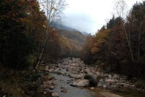 通天河国家森林公园