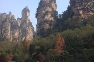 石家庄旅行社发团到湖南张家界凤凰古城旅游团  纯玩双卧六日游