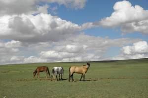 呼和浩特周边—希拉穆仁草原、库布齐沙漠二日游(赠豪包含保险)